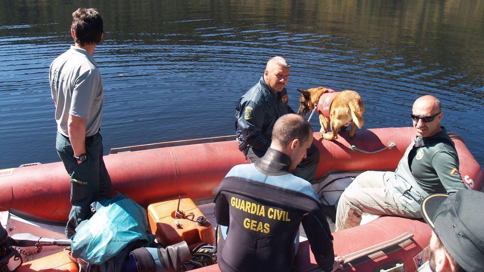 Buscan a Emilio Pintor en el Miño con un perro especializado en rastreo en el agua