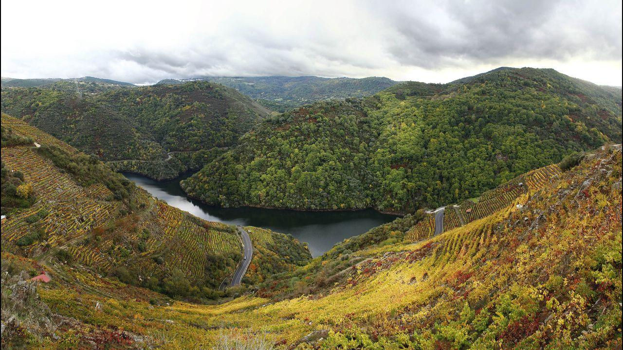 El camino ofrece unas amplias vistas del cañón del Sil y los viñedos de Doade
