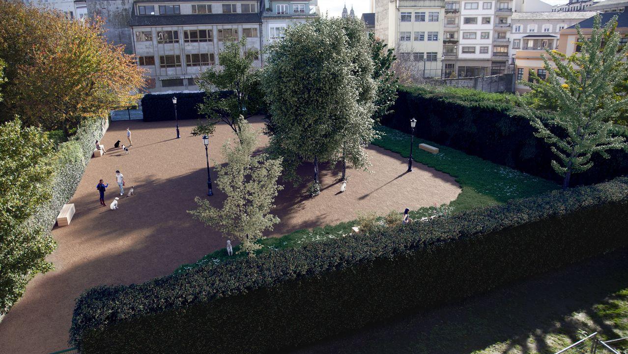Las primeras imágenes del nuevo canil de la zona centro de Lugo