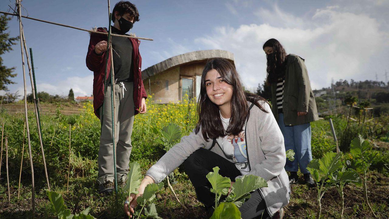 Protesta de los barcos de bajura en el puerto de A Coruña.Eva Paola Bermúdez tiene 24 años, es estudiante del máster de Políticas Sociais de la UDC y a la vez trabaja como transportista en una microempresa de la familia. En la foto, con sus hermanos, Manuel y Rebeca, en la huerta que cultiva en el campus de Elviña