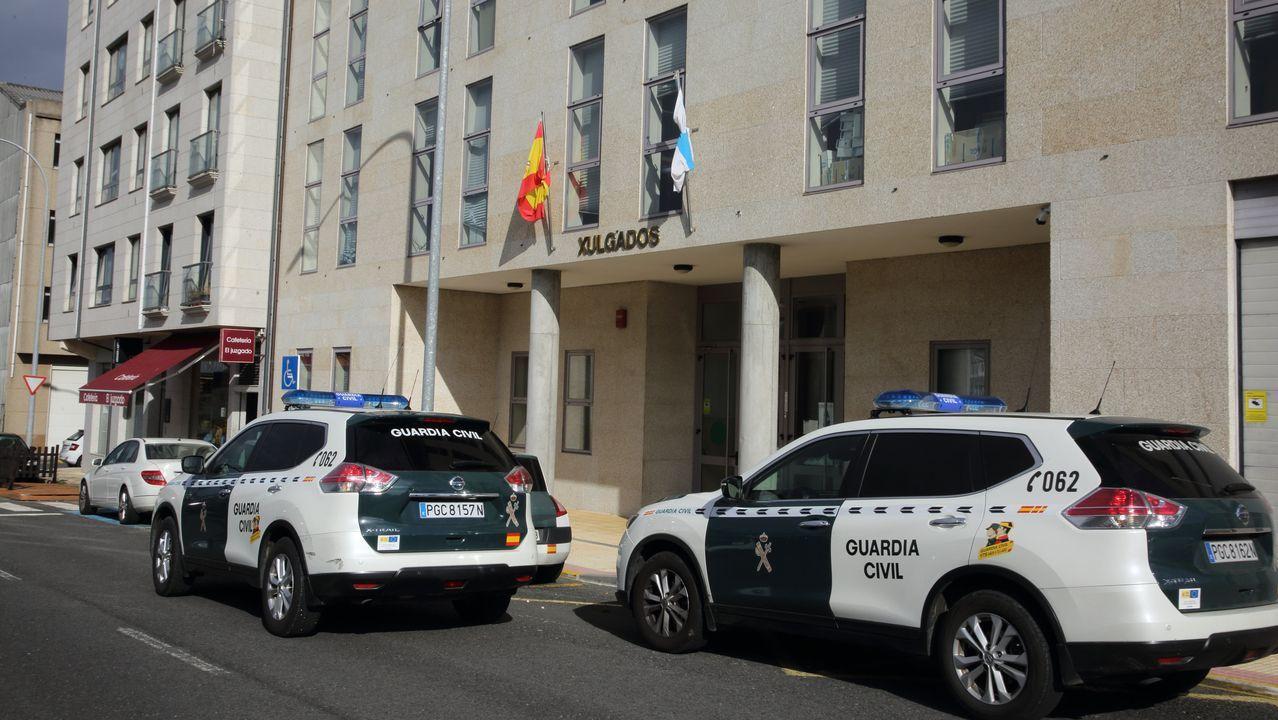 Errejón le habría encargado a Carolina Bescansa la preparación de listas en Galicia