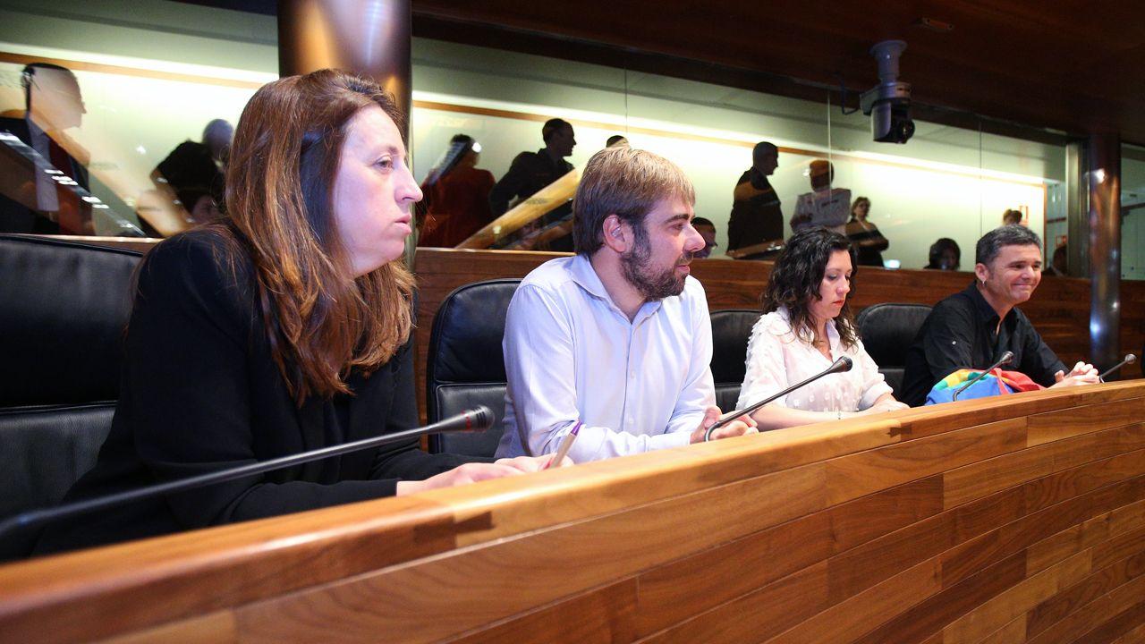 Los cuatro diputados que integran el grupo parlamentario de Podemos en la Junta General