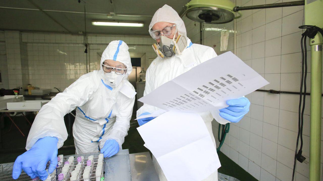 El plan de desescalada que plantea la Xunta.Recogida de muestras en el Hospital Virxe da Xunqueira de Cee para detectar el coronavirus
