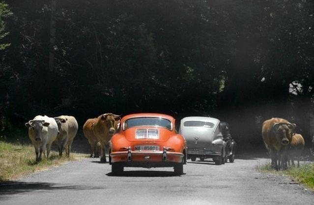Así fue el paseo de David Villa en un Ferrari.Dos de los vehículos participantes de una de las ediciones anteriores del Rally Turístico Terras do Incio