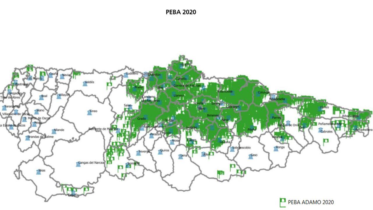 Actuaciones del PEBA 2020