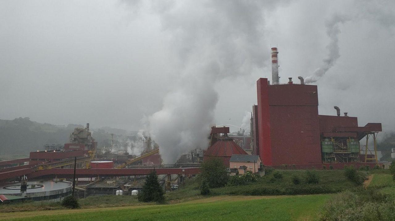 La fábrica de ENCE en Navia
