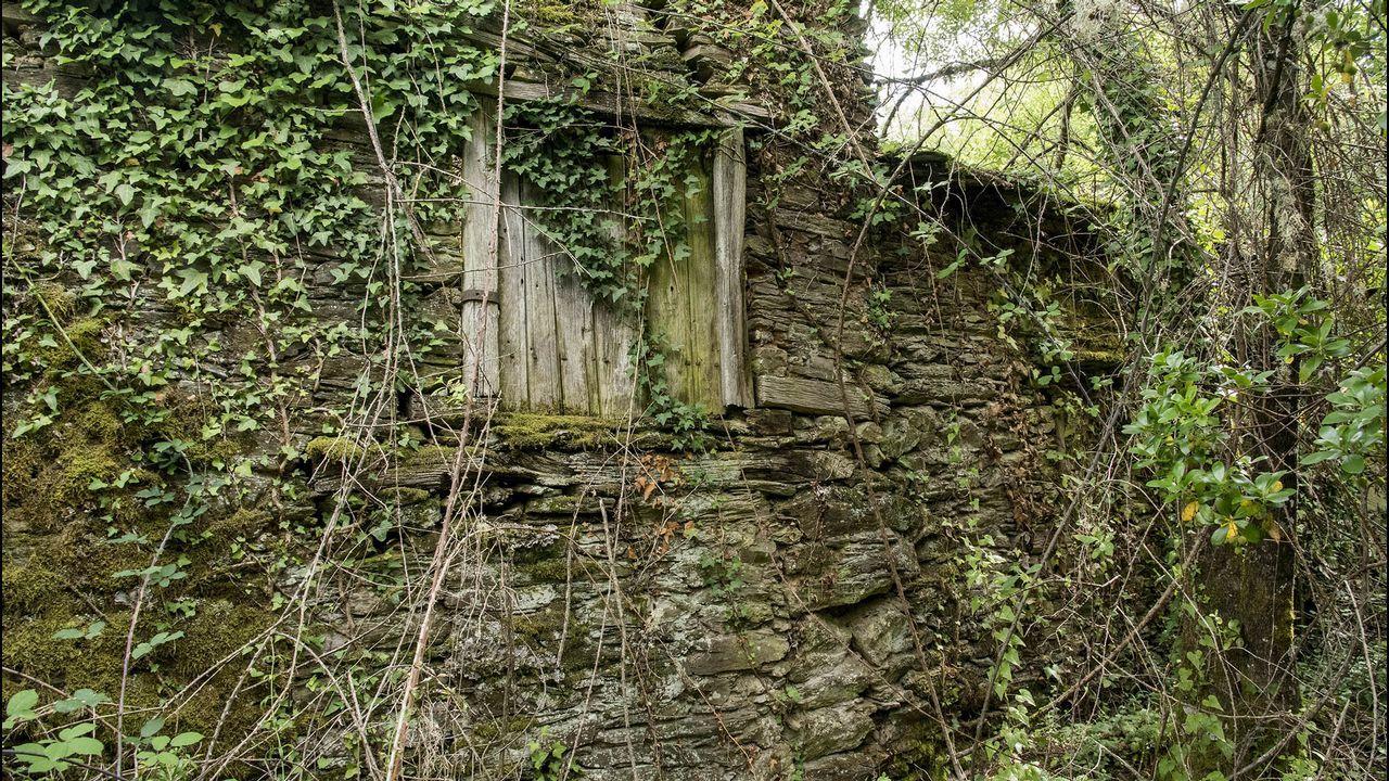 Uno de los antiguos sequeiros de castañas que se encuentran en las cercanías de iglesia arruinada