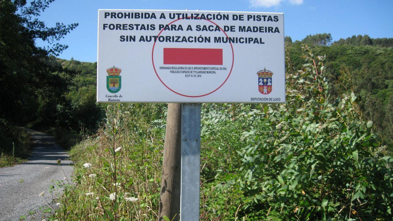 En concellos como Riotorto hay avisos sobre el paso de camiones con madera en pistas municipales