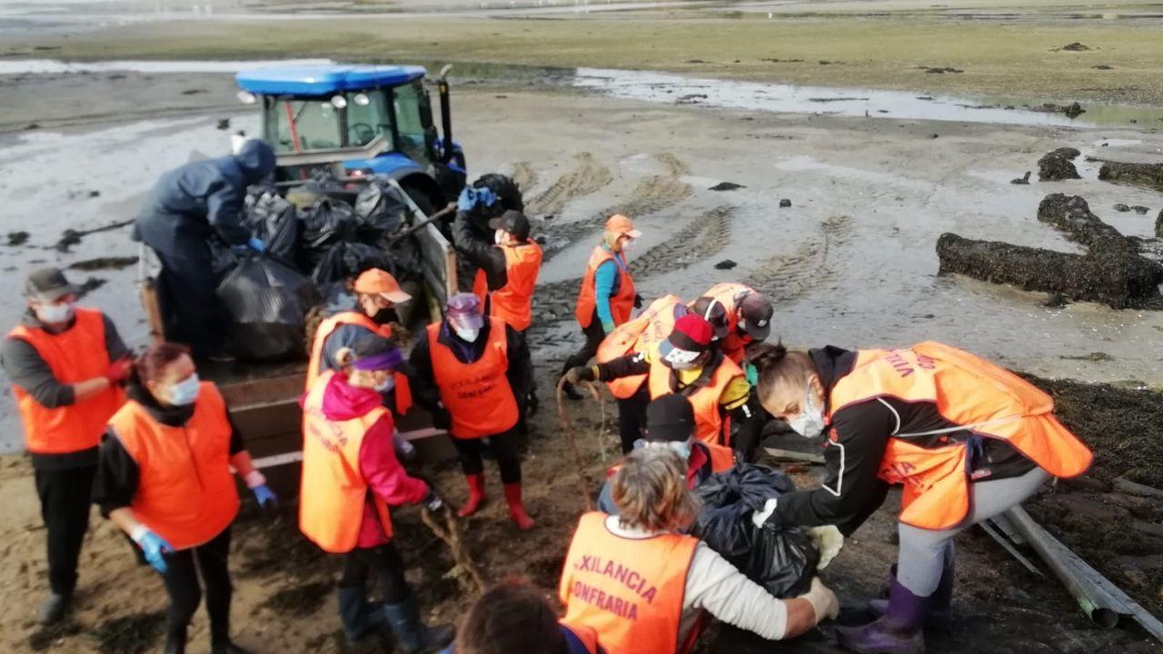 ¡Mira aquí las fotos de la limpieza realizada por los mariscadores de Noia en el banco natural de San Cosme!.Durante el jueves y ayer por la mañana realizaron los test 1.398 de las 2.159 personas convocadas
