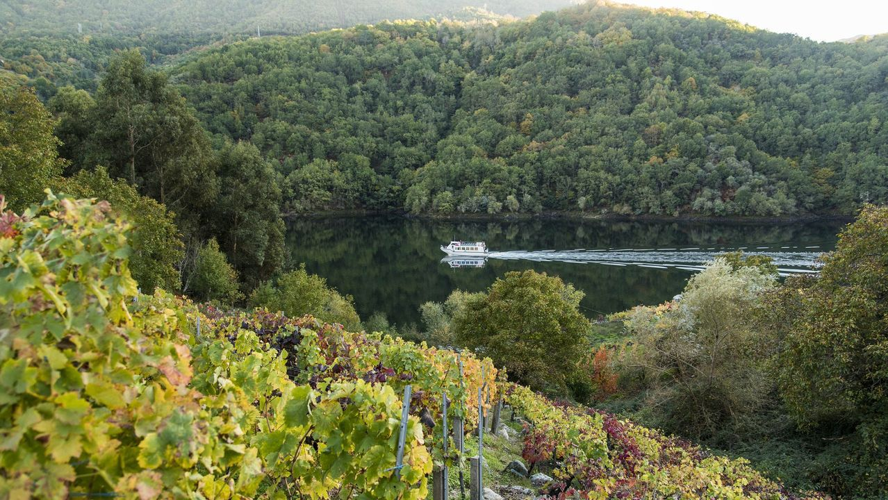 Las fotos de la ruta entre Samos y O Courel