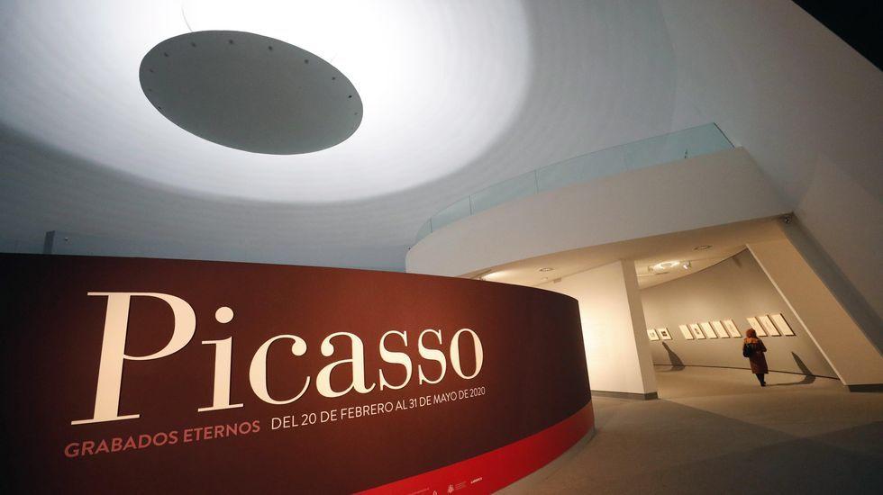Multitudinaria despedida al empresario Plácido Arango.Exposicion de Picasso en el Niemeyer