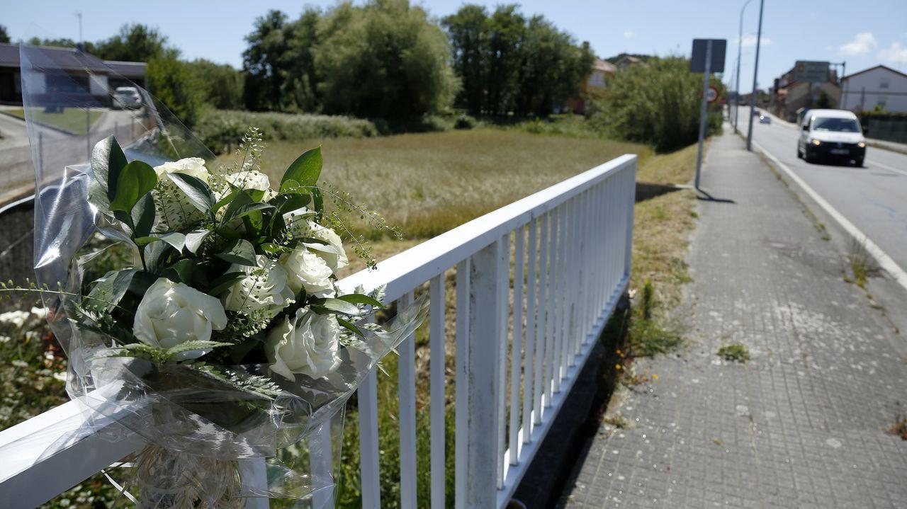 La Guardia Civil recupera el cañón expoliado en Corrubedo.En el lugar del accidente se colocó un ramo de rosas blancas