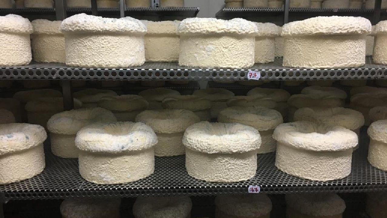 El almacén de la empresa Airas Moniz está ahora repleto de quesos que no se han podido vender debido al cierre de los restaurantes, que en condiciones normales conforma el grueso de su clientela