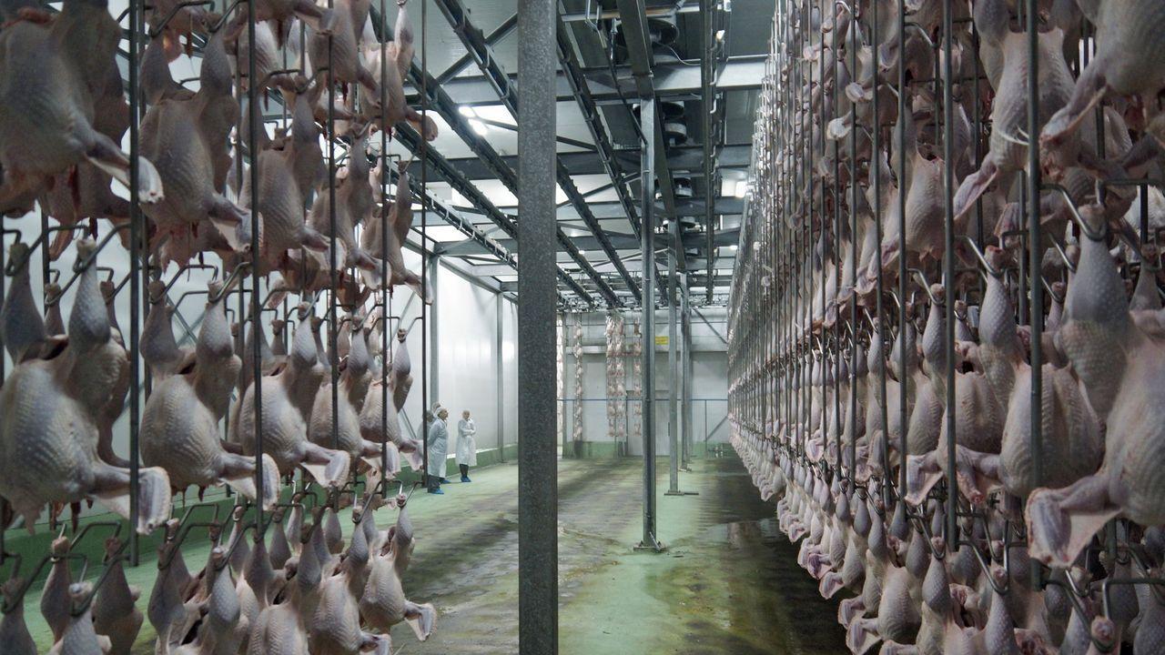 Sociedad Textil Lonia adapta su línea de fabricación de sastrería para crear material sanitario en colaboración con el Sergas.Las empresas del sector textil asoman en el ránking laboral