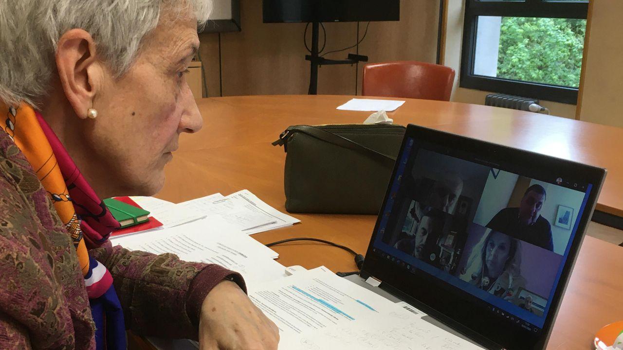 Principado .La consejera de Educación, Carmen Suárez, en la reunión telemática con los directores