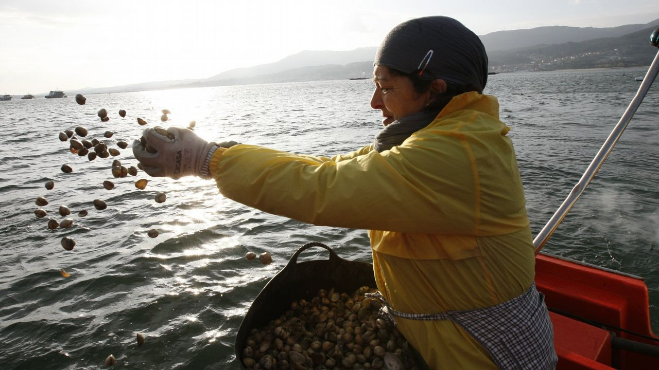Pablo Rodríguez, Oitavén, fala sobre o bosque de Ridimoas.Captura de atún rojo en Barbate