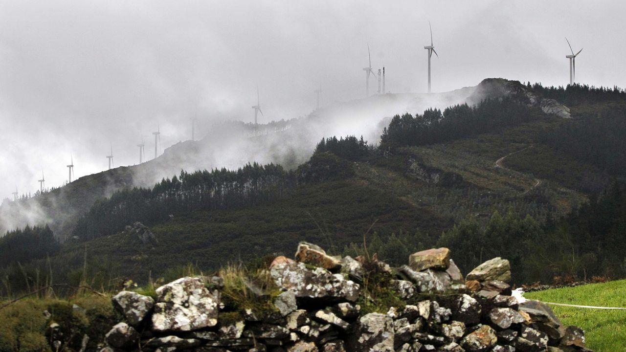 Francisco Conde: «Galicia tiene que ser atractiva para invertir, pero no a cualquier precio».Paco Ramos, de Ecologístas en Acción