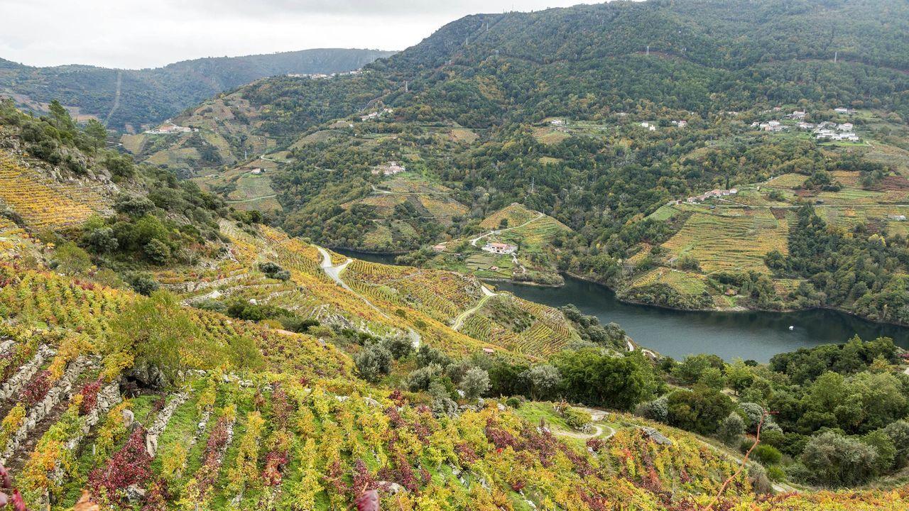 La nueva comisión interdepartamental velará por la conservación de los valores del paisaje cultural de la Ribeira Sacra