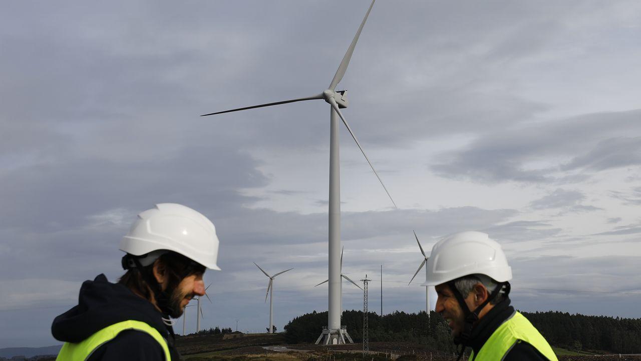 «La eficiencia de estos eólicos es superior a la de anteriores generaciones»