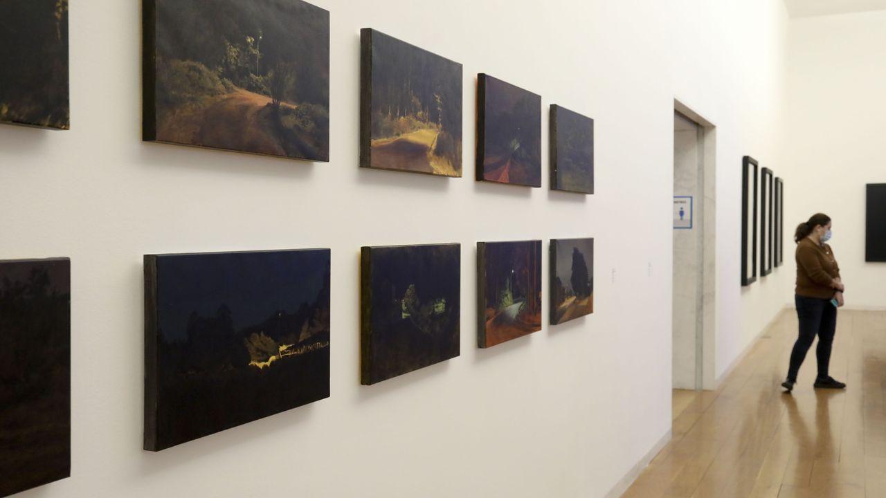 Unha visitante nunha das salas do CGAC que acolle a mostra sobre Belas Artes