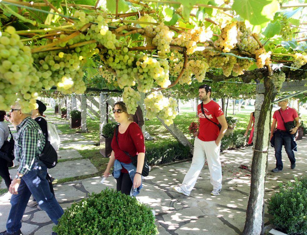 ¿Abrirá el pazo de Meirás en agosto?.Entre las ofertas figuran rutas por los viñedos de la Denominación de Orixe Rías Baixas.