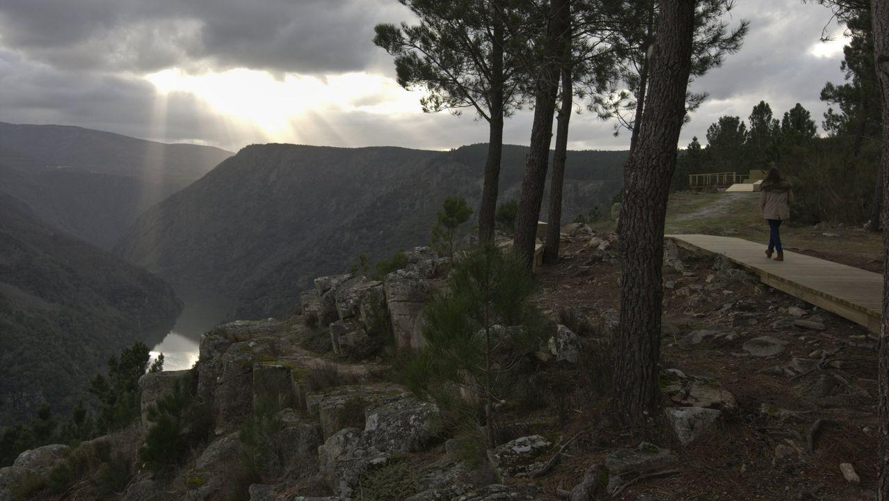 Setas de O Courel que no estaban catalogadas en la península Ibérica y en Galicia.Una vista del cañón del Sil desde el mirador de Santiorxo, en el municipio de Sober