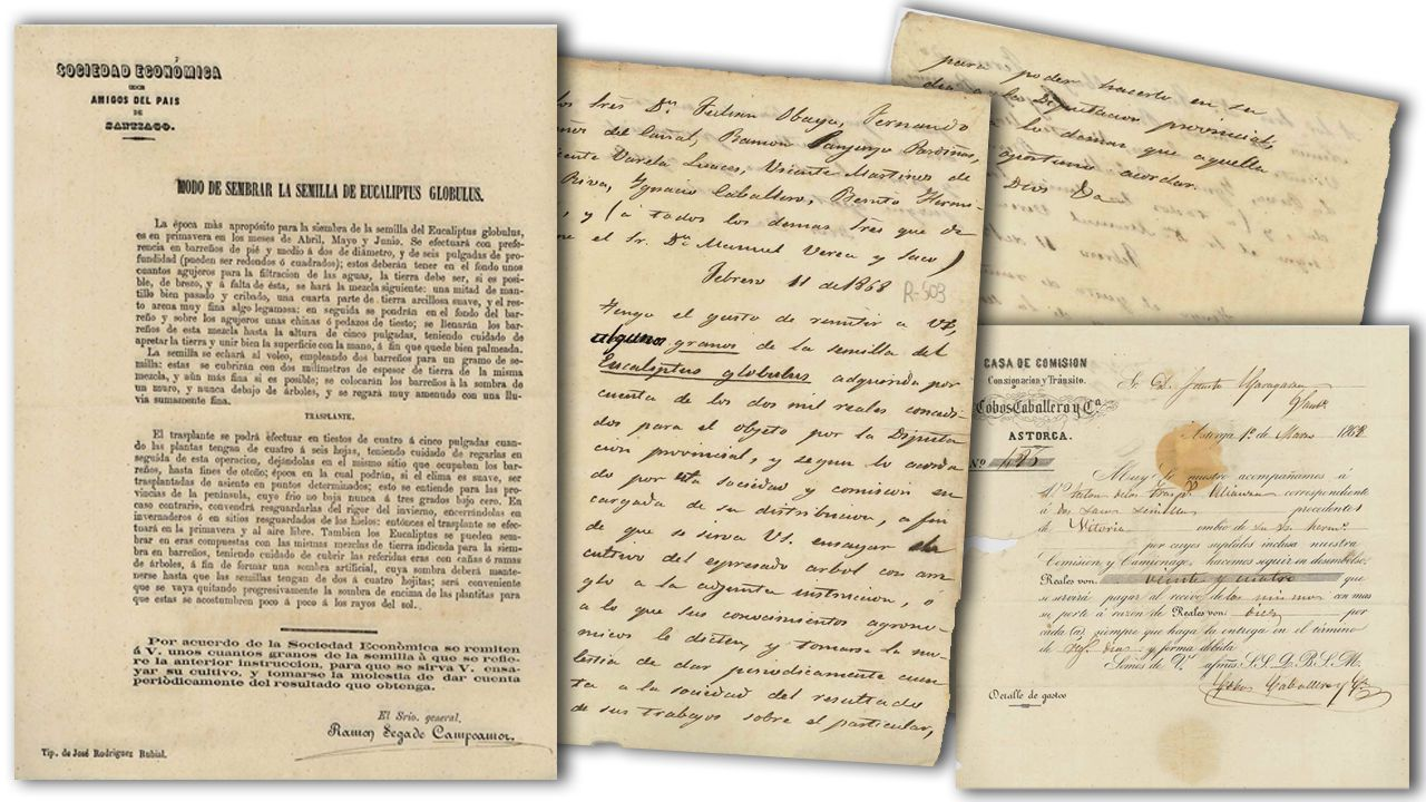 los documentos    Entre los documentos hay un manual para la plantación de las semillas de eucalipto y una carta para su distribución, así como la consignación de su envío en Astorga.