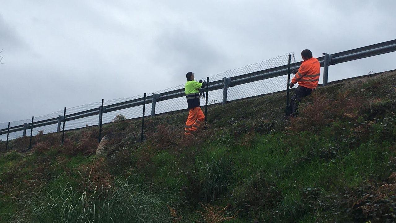 Reformas Teuvento.Operarios de Audasa trabajando en la valla de la AP-9