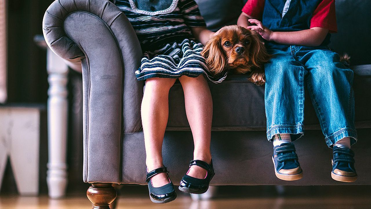 Dos niños acarición a un pero sentados en un sofá