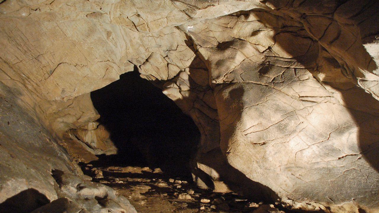 Otro aspecto de la sala en la que se encuentran las muestras de arte rupestre descubiertas en el 2011