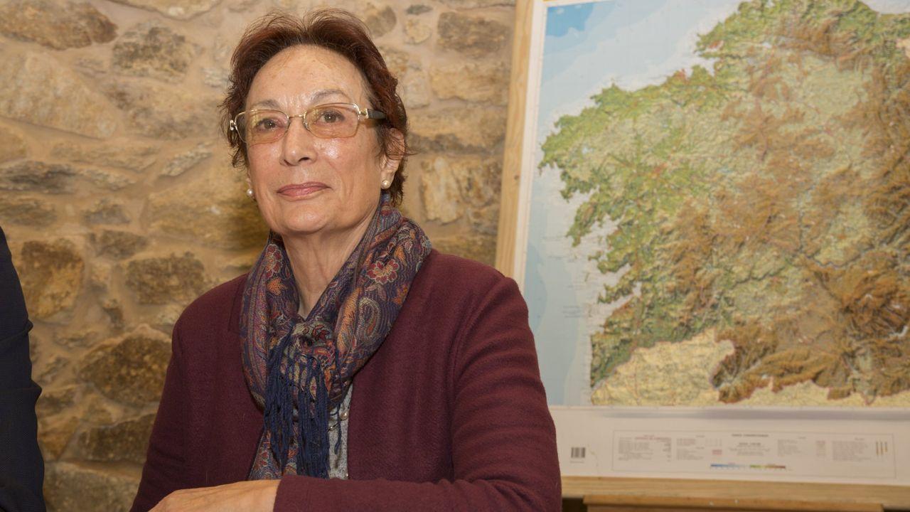 Las peores vistas de edificios desde la Muralla de Lugo.Isabel Aguirre dirige la escuela de paisaje de la Fundación Juana de Vega