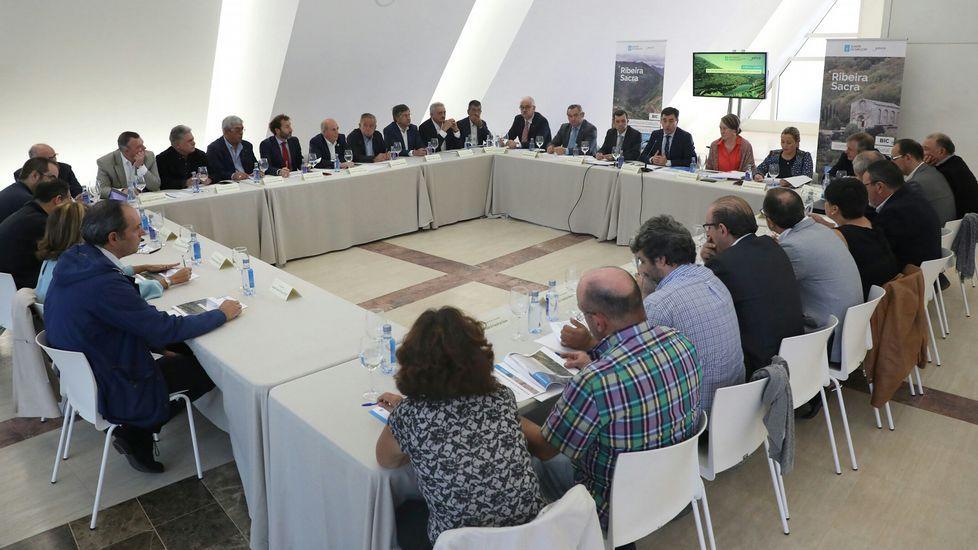 El conselleiro de Cultura, Román Rodríguez, se entrevistó con los 21 alcaldes de Ribeira Sacra