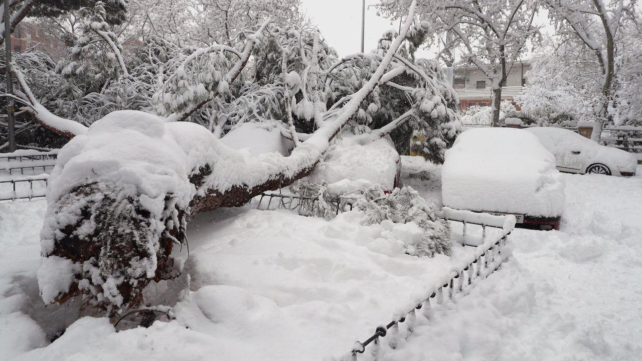 Las máquinas retirando nieve en la Gran Vía