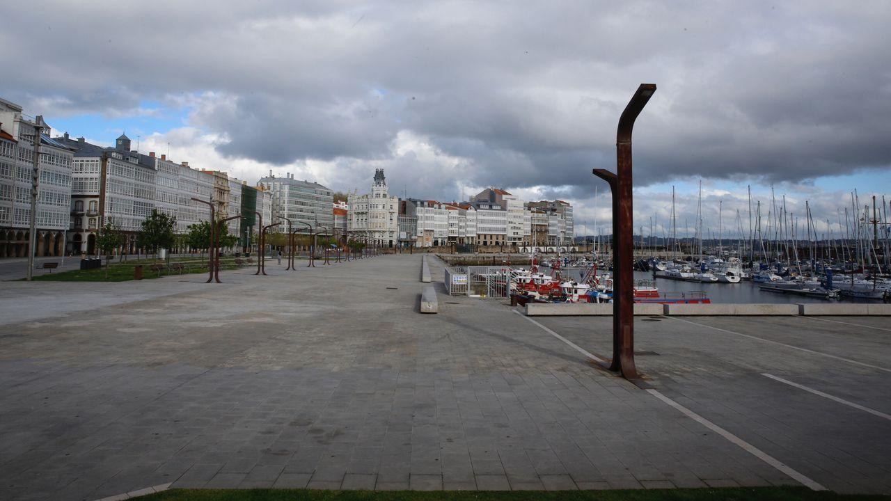 Avenida de la Marina (A Coruña)