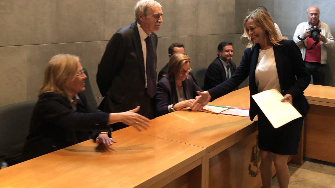 Dolores Carcedo, Gimena Llamedo, Ángela Vallina, Ovidio Zapico, Alberto Tirador.Ángela Vallina recoge el acta de diputada