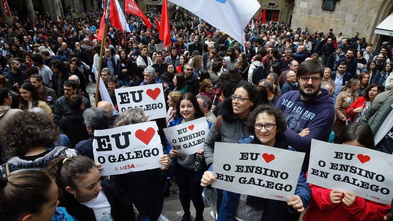 Manifestacións polo Día das Letras Galegas.Luís Villares, en una de sus últimas intervenciones en el Parlamento