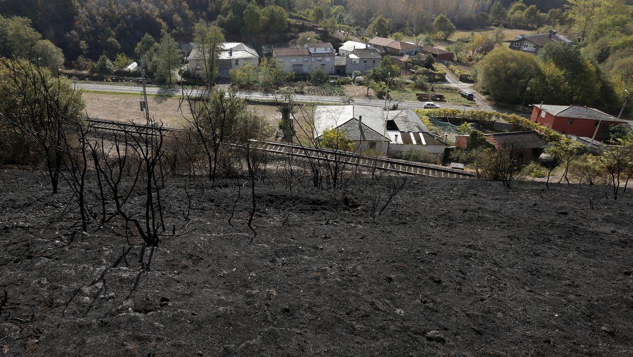 Investigan a un grupo organizado en los incendios de Pazos de Borbén.Un bombero en un incendio