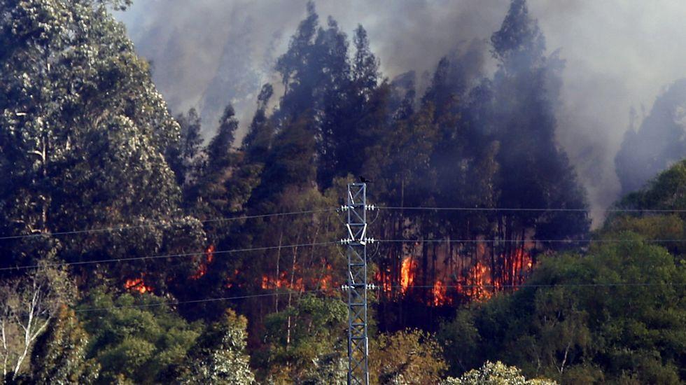 Memoria histórica.Uno de los incendios forestales registrados en Llanes y en cuya extinción trabajan los Bomberos del Servicio de Emergencias del Principado (SEPA)