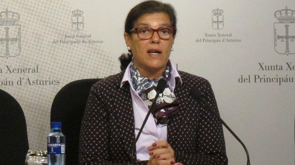 La diputada del PP en la Junta General, Carmen Pérez García.La diputada del PP en la Junta General, Carmen Pérez García