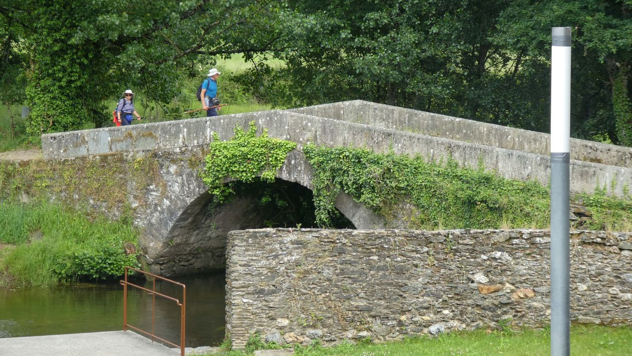 Chequeo al Camino Francés en los municipios de Melide y Arzúa