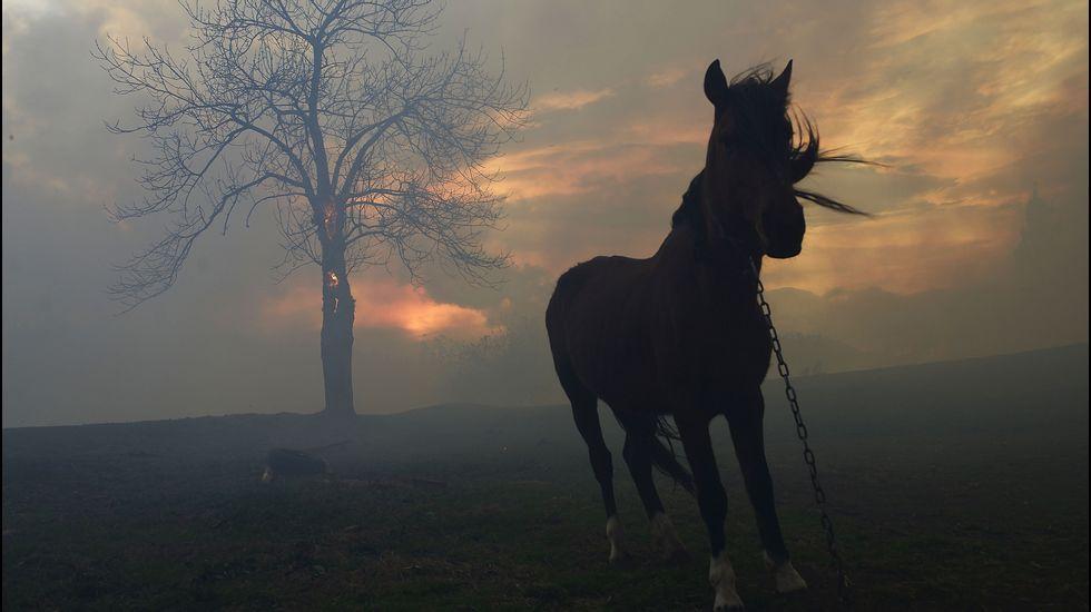 Siguen los incendios en Cantabria.