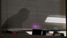 Un trabajador de Cambridge Analytica, en las oficinas londinenses de la compañía