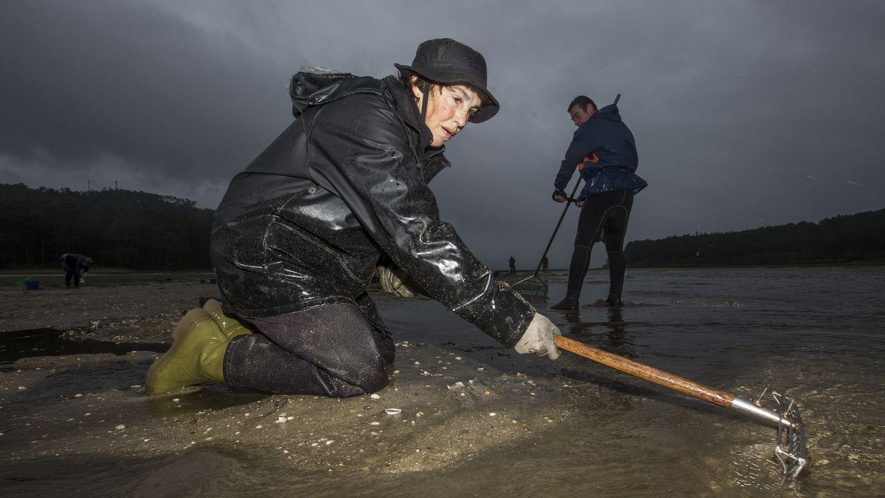 La vuelta a la faena no rebaja la tensión entre las mariscadoras de Camariñas