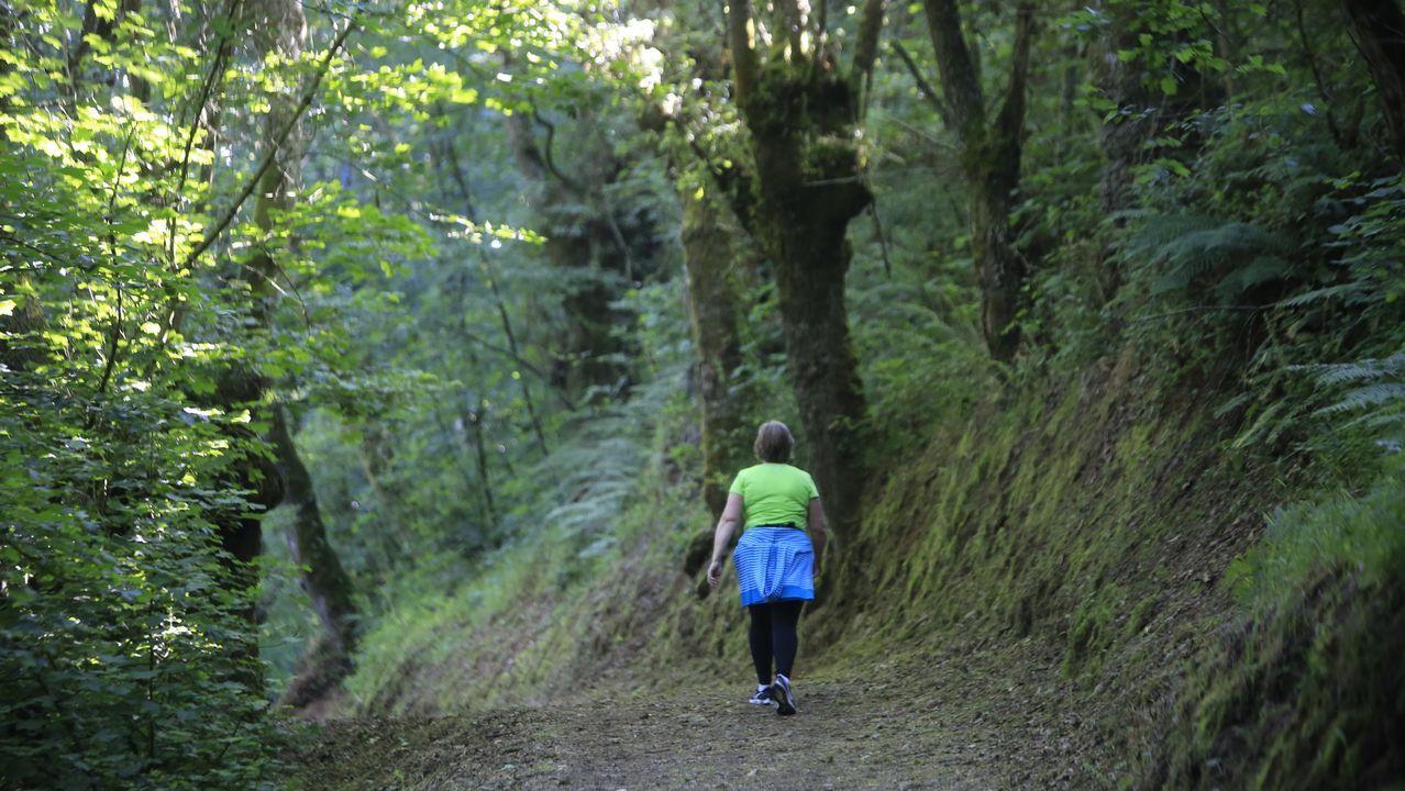 Una mujer camina por la zona de Sarria en la que el pasado miércoles se produjo la agresión