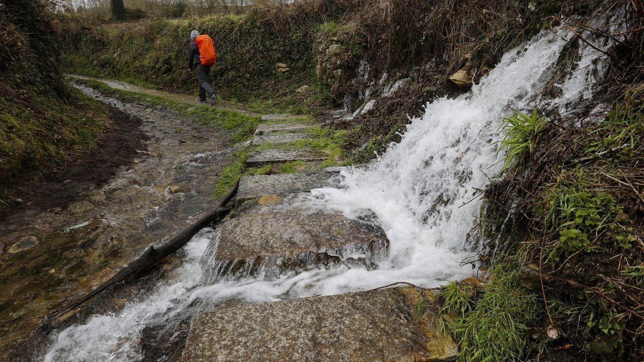 Arroyo canalizado en la zona entre Morgade y Ferreiros