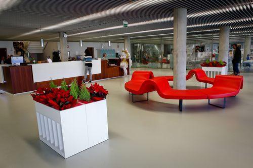 Biblioteca Pública de Ourense.Vestíbulo de entrada y punto de atención al público.