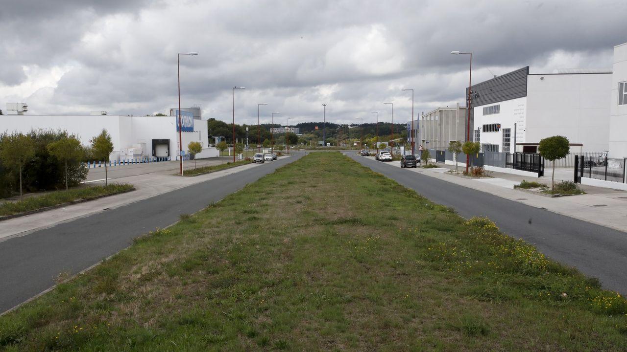 La mediana de la calle D del polígono de As Gándaras