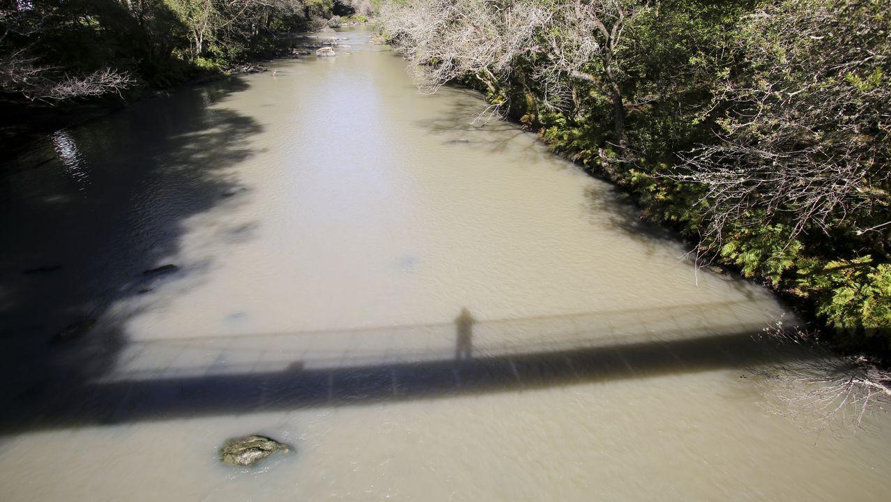 Así de turbias bajaban las aguas del río este viernes, a su paso por las Fragas do Eume