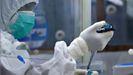 Manejo de muestras de PCR en un laboratorio
