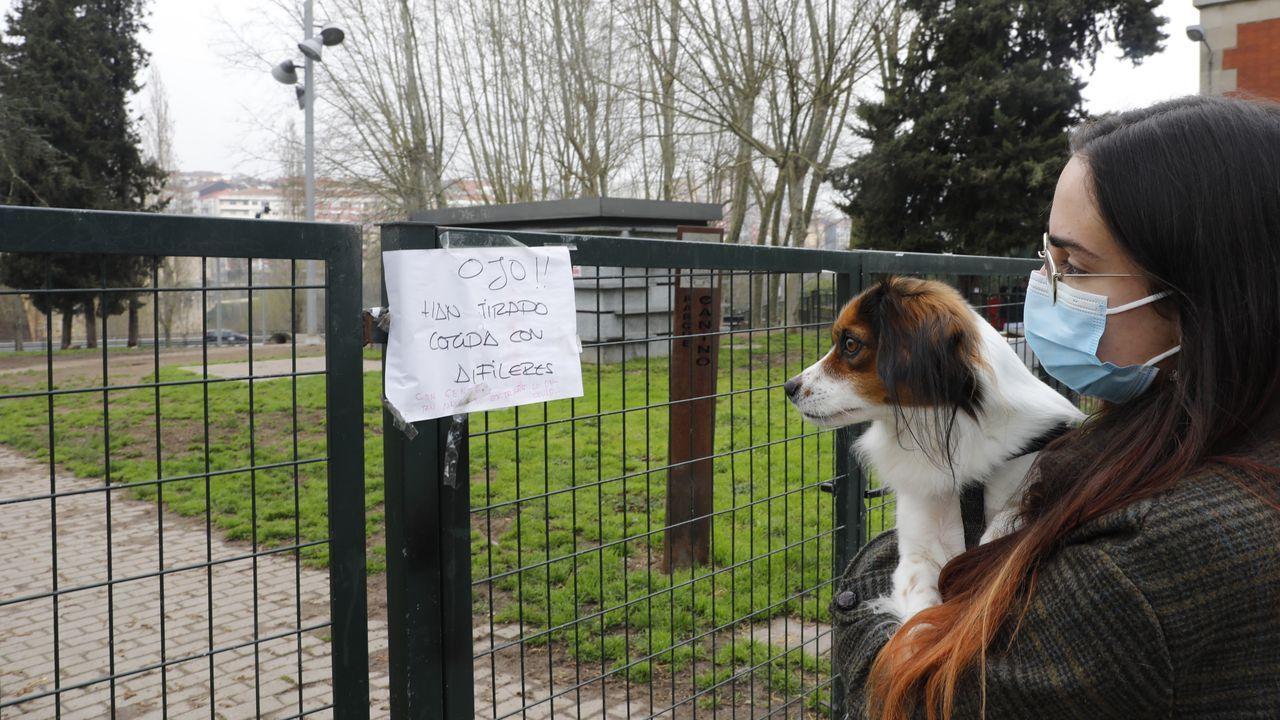 El parque canino de Salesianos es uno de los lugares en los que han aparecido trampas
